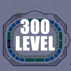 300-levelthumb.jpg